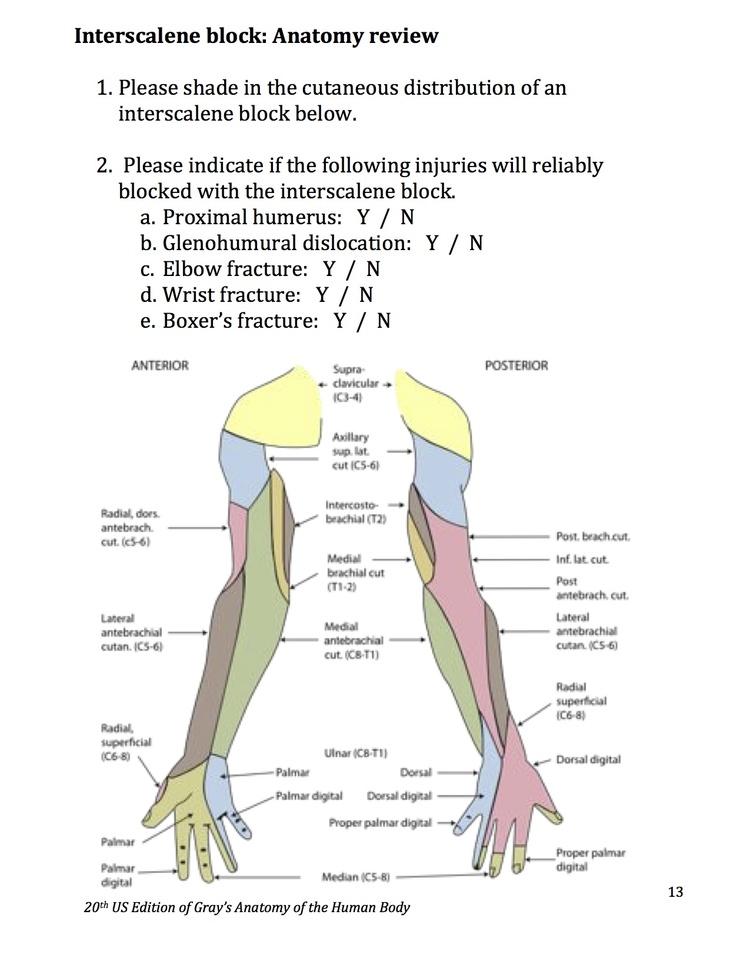 Interscalene — Highland EM Ultrasound Fueled pain management