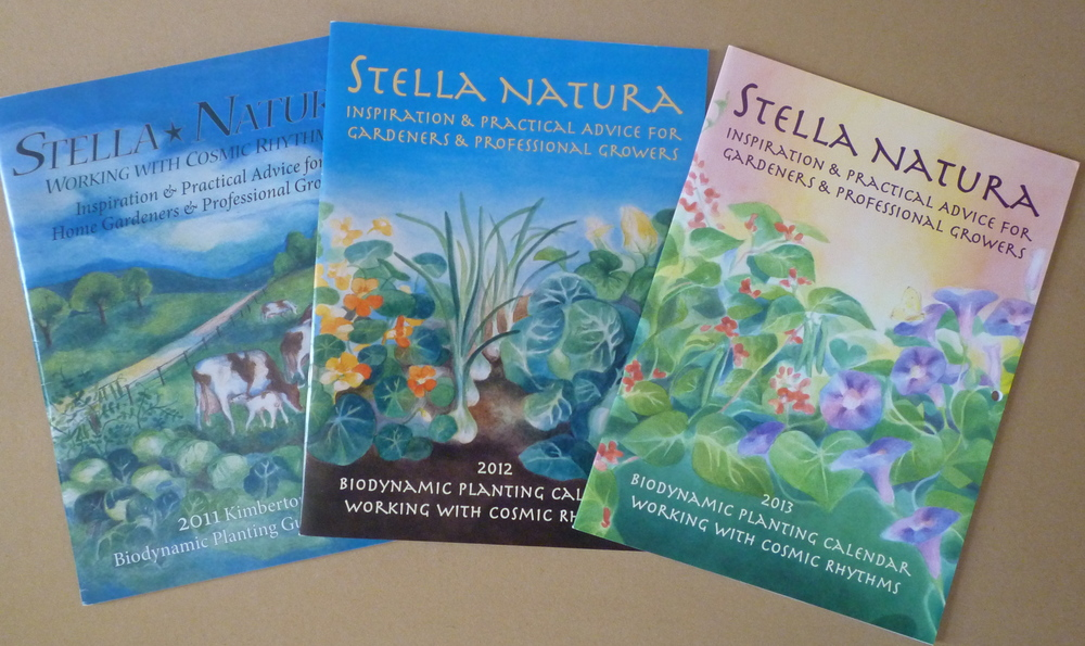 2011, 2012, 2013 Stell Natura covers by Ella Lapointe