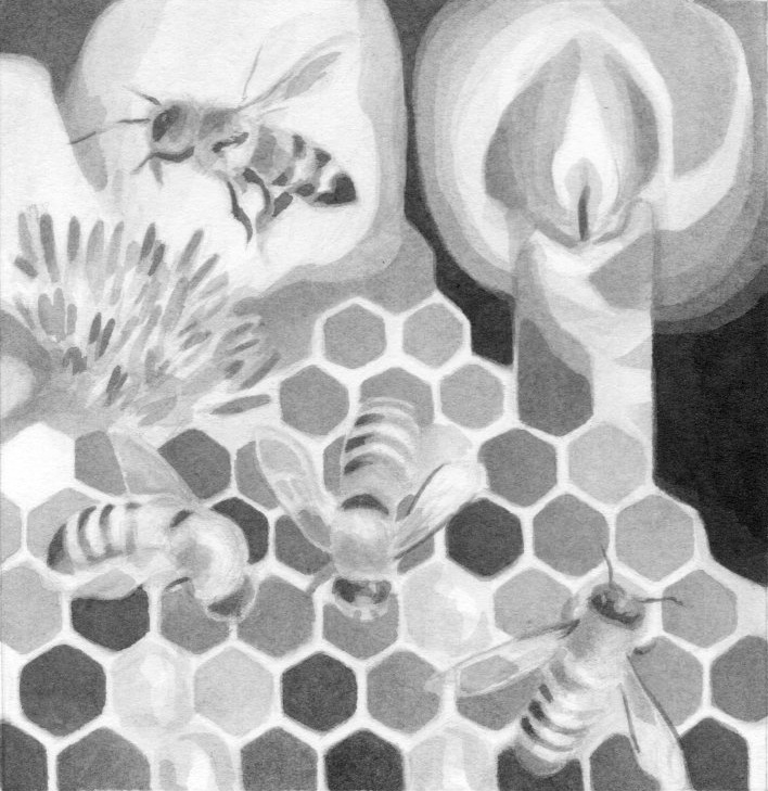 Bee Meditation, Stella Natura 2012