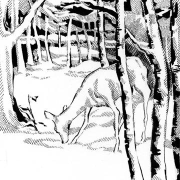 Poetry Illustration