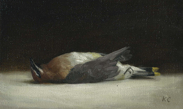 Kelly Carmody, 'Cedar Waxwing', 5.25 x 8.5, Oil on Linen