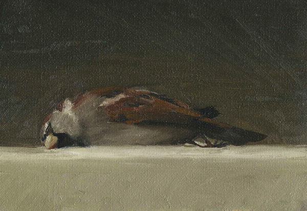 Kelly Carmody, 'Sparrow', 5 x 7, Oil on Linen