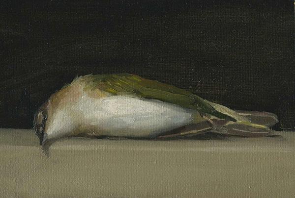 Kelly Carmody, 'Warbler 1', 4.25 x 6.5, Oil on Linen