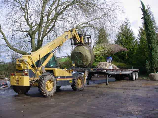 10,000lb. Telescopic boom