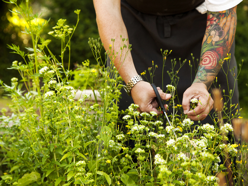Burggraaf_Charity-Seattle_Food_Photographer-Willows_Inn_Lummi-Sean_Brock.jpg