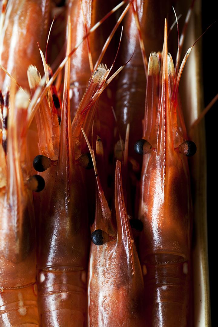 Burggraaf_Charity-Seattle_Food_Photographer-Shiros_Spot_Prawns.jpg