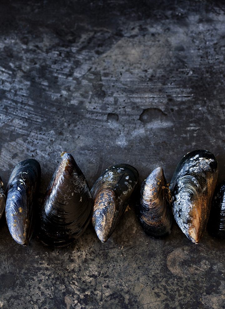 Burggraaf_Charity-Seattle_Food_Photographer-Nathan_Carrabba-Pasta-mussels.jpg