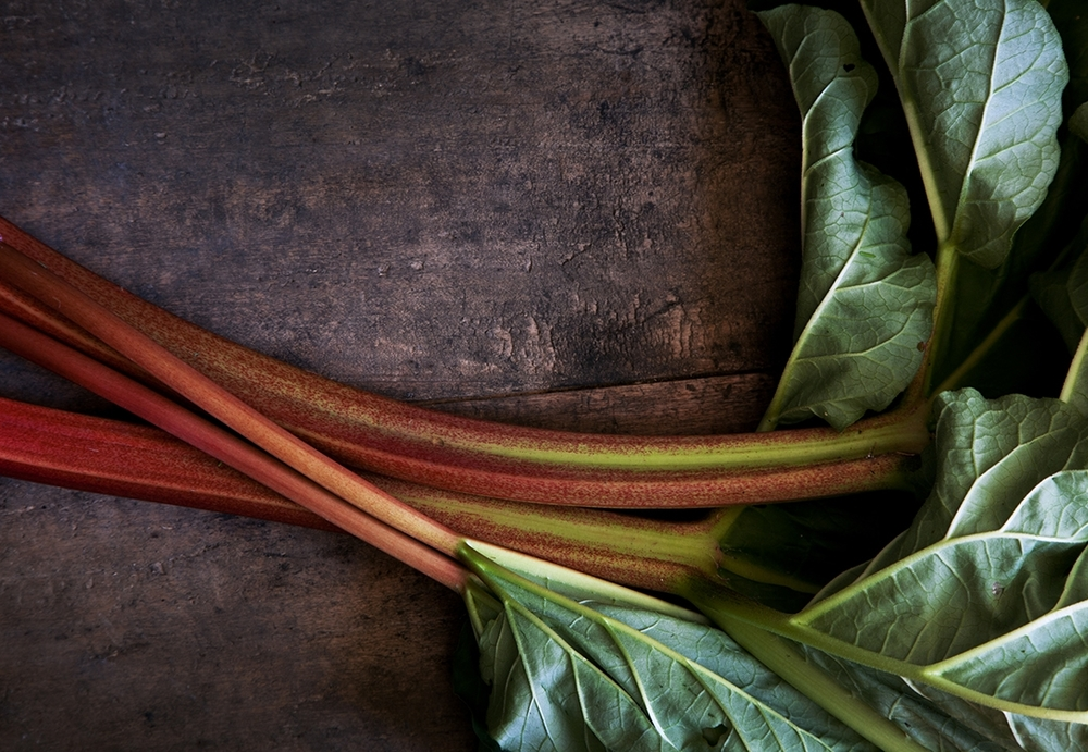 Burggraaf_Charity-Seattle_Food_Photographer-Rhubarb.jpg