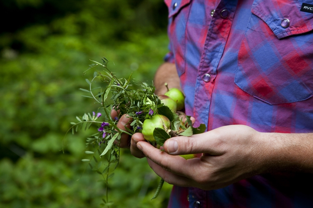 Burggraaf_Charity-Seattle_Food_Photographer-Foraging.jpg