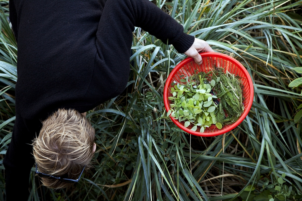 Burggraaf_Charity-Seattle_Food_Photographer-Willows_Inn-Foraging.jpg