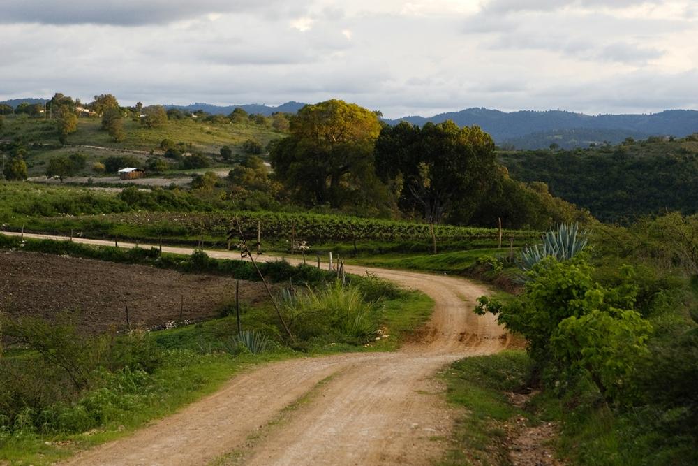 Burggraaf_Charity-Seattle_Travel_Photographer-Oaxaca_Farm.jpg