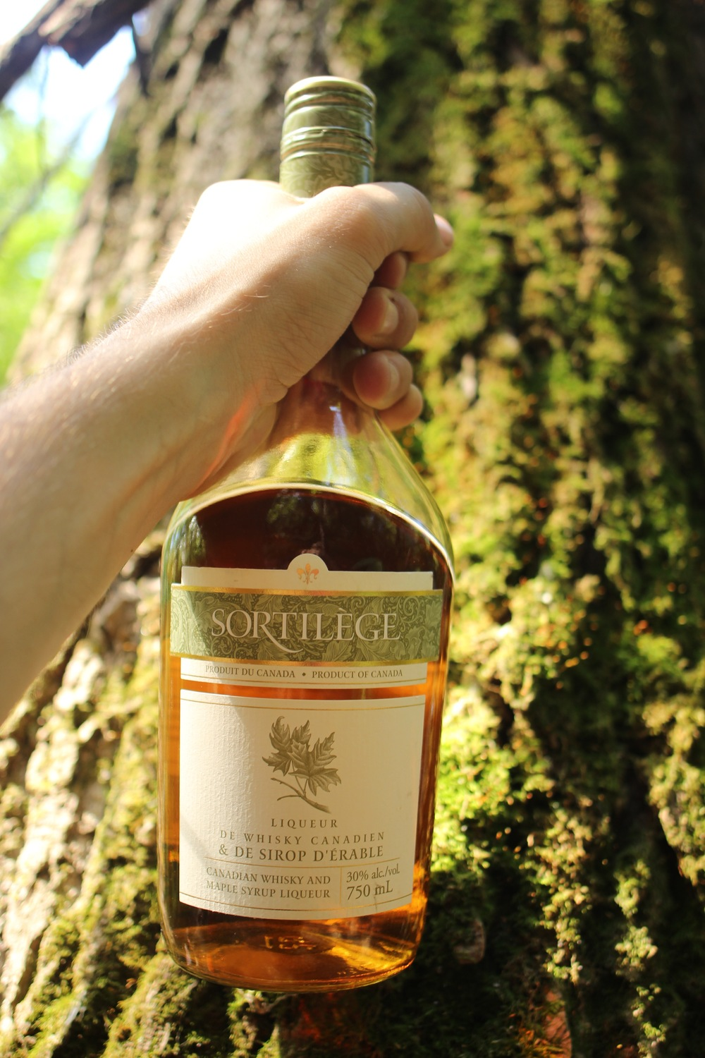 Sortilège whisky érable