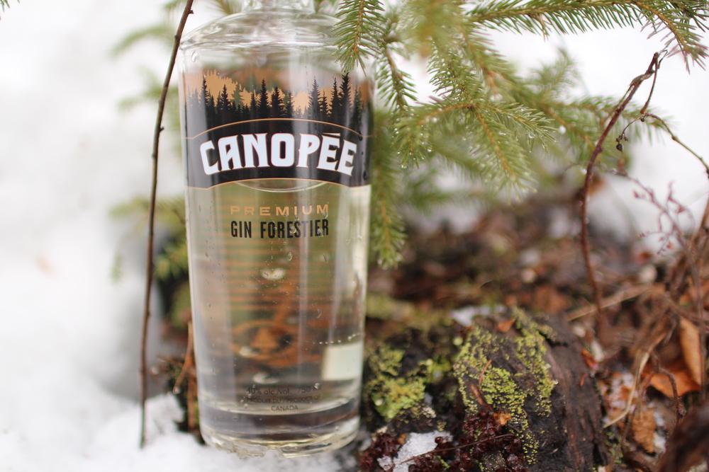 Canopee Gin Forestier Boirelocal