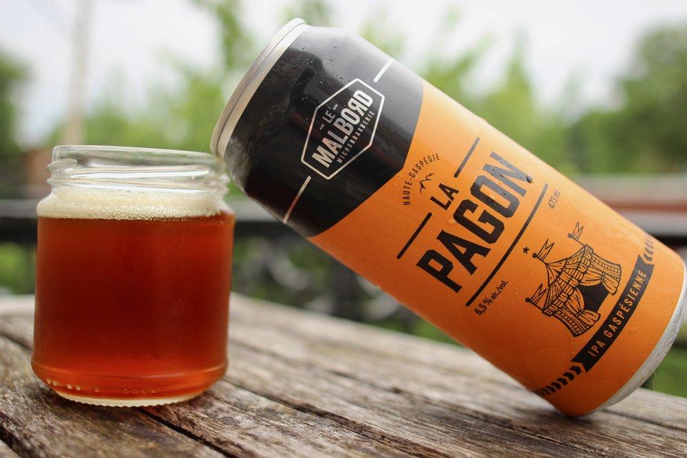 Pagon IPA gaspésie Malbord bière