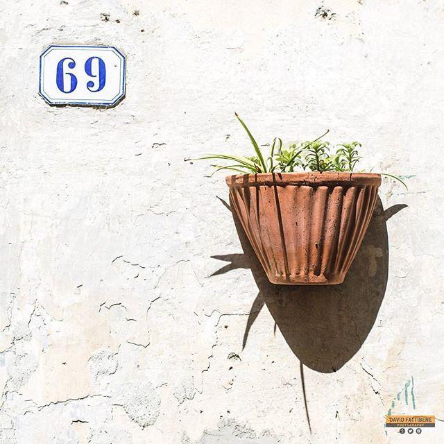 Pot 69