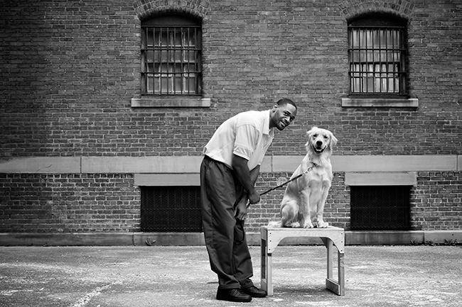 Puppies Behind Bars. Photography by Radhika Chalasani