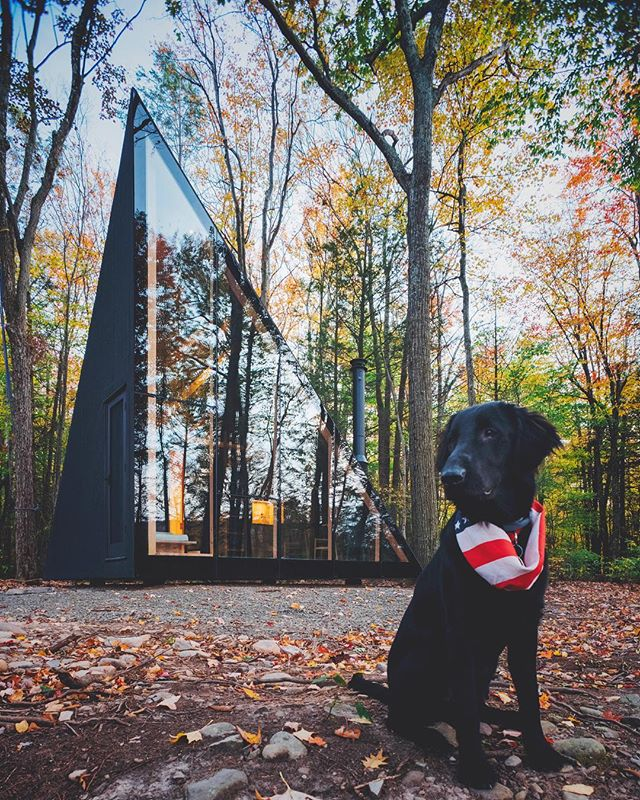 Last year when myself, @cellybell, and @cliffordthebigcitydog went upstate to photograph the @big_builds X @sorenrose collaboration.  Fun shoot and great to look back on. Just look how tiny Clifford was. 🤗 #tbt #flatcoatedretriever #upstateny #architecture #architecturephotography