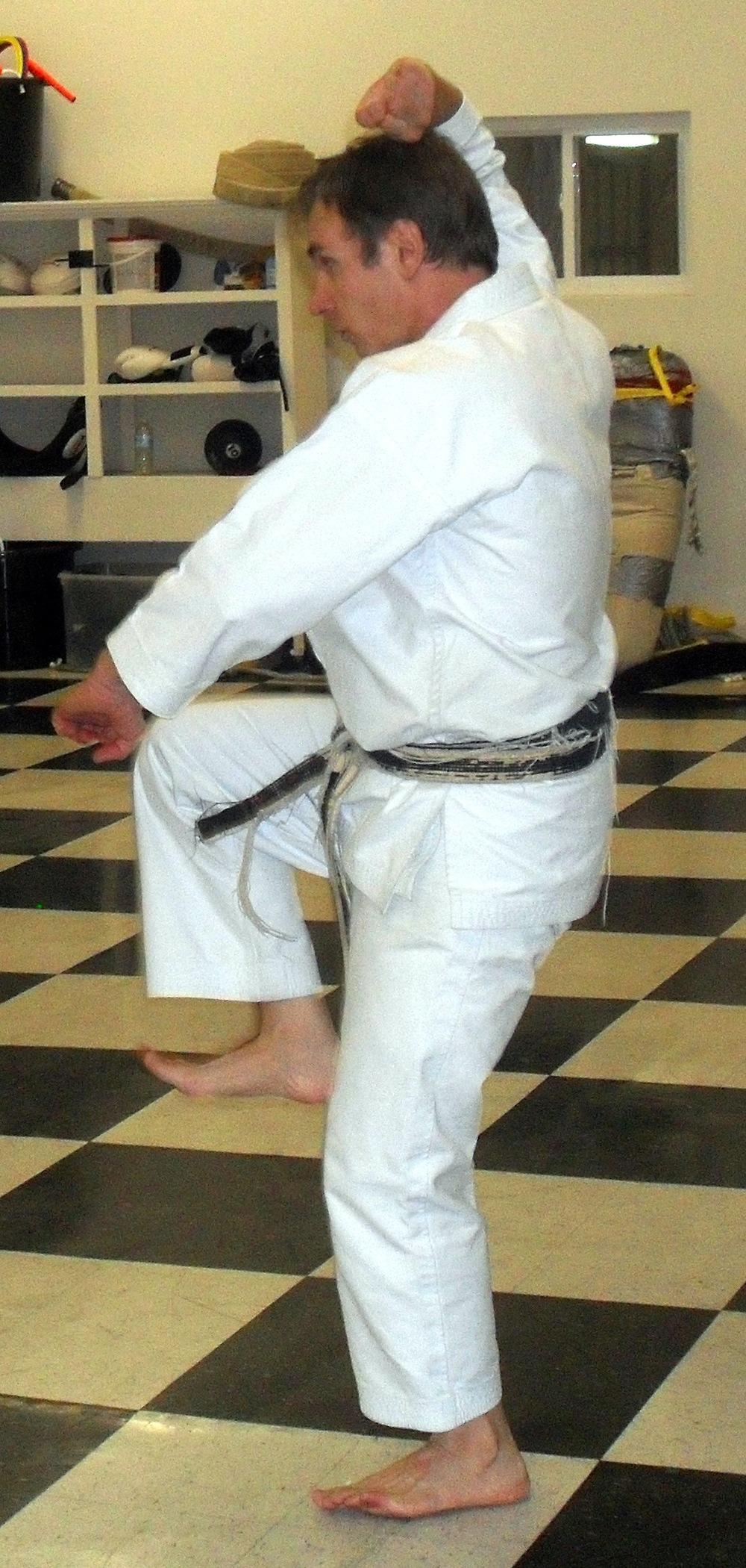 Inside the dojo