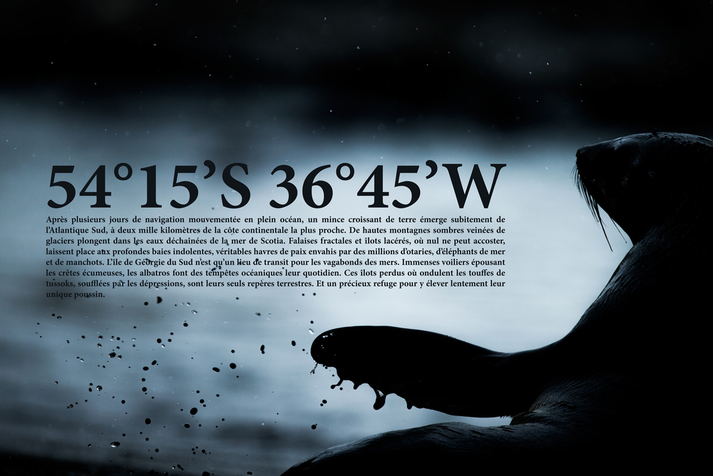 panneau_02._web.jpg