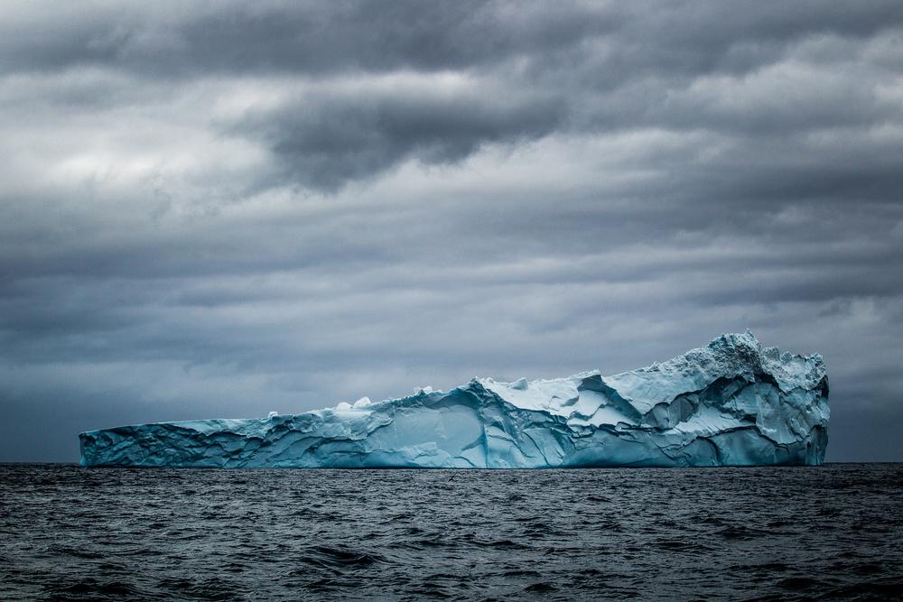 Iceberg - Géorgie du sud