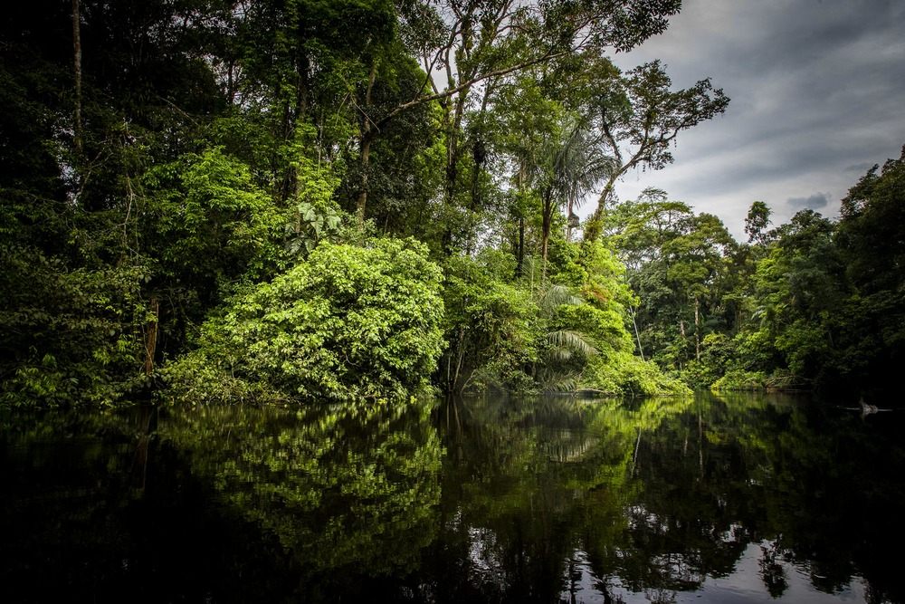 fleuve - amazonie - Equateur
