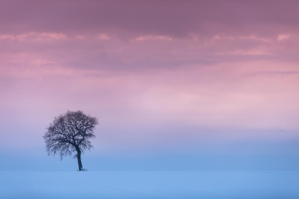 photo paysage normandie