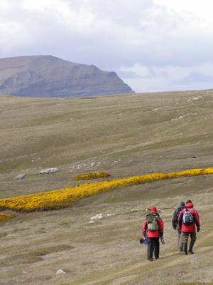 Walking in the Falkland Islands