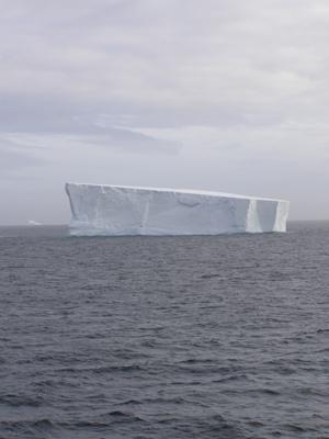 Iceburg-spotting in Antarctica