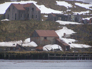 An abandoned whaling station in South Georgia Island