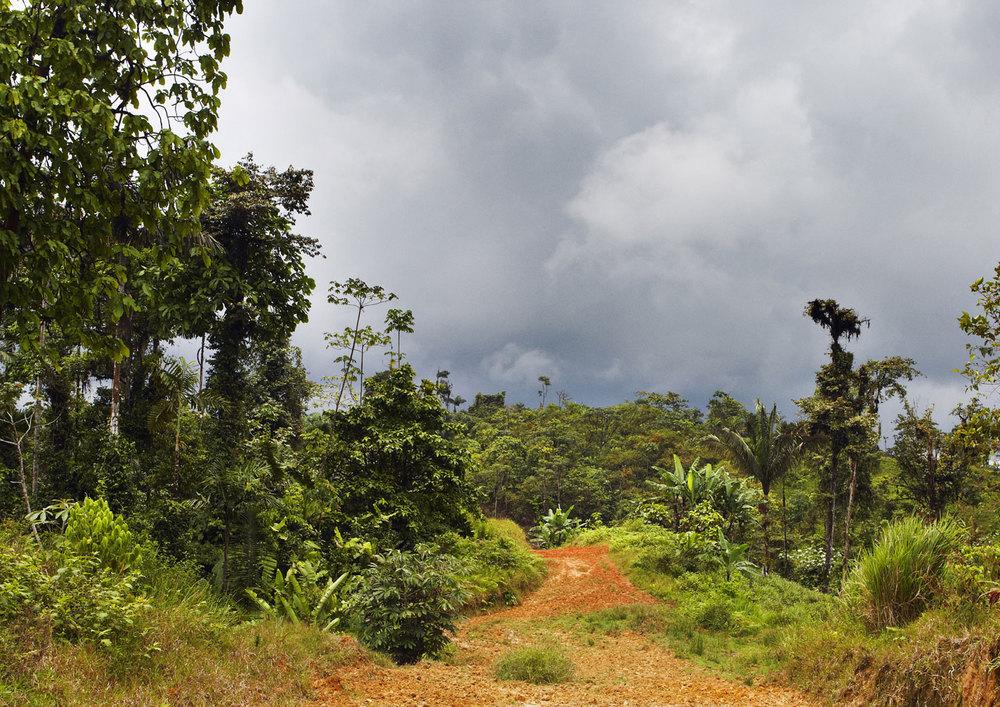 Bilsa, Ecuador.
