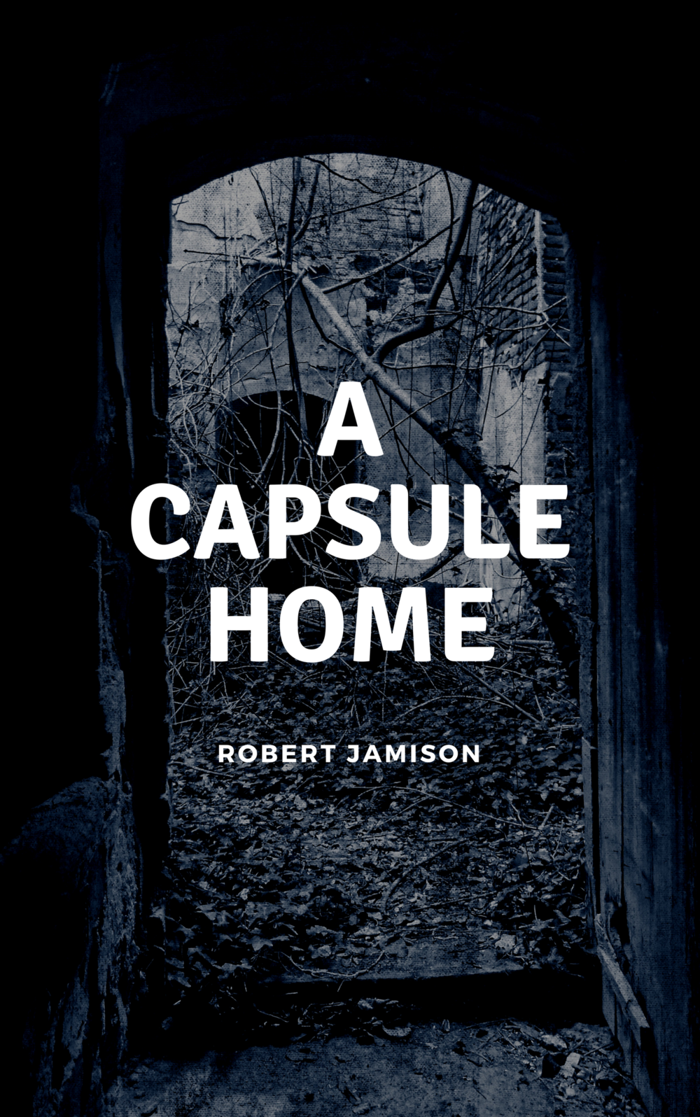 ACapsule Home.png