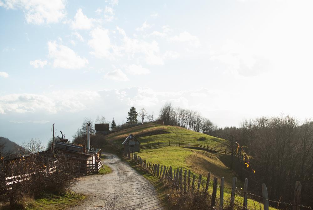 Skakavac, 2014