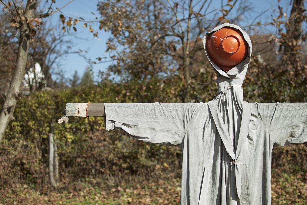 Scarecrow - November 2015