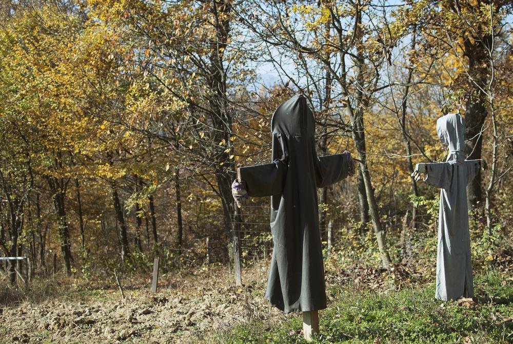 Two Scarecrow - November 2015
