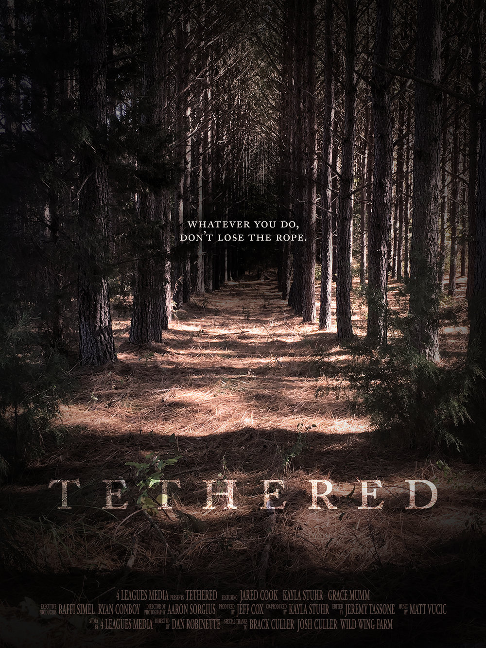 Tethered_Teaser_Poster_Official._18x24ORIGINAL.jpg