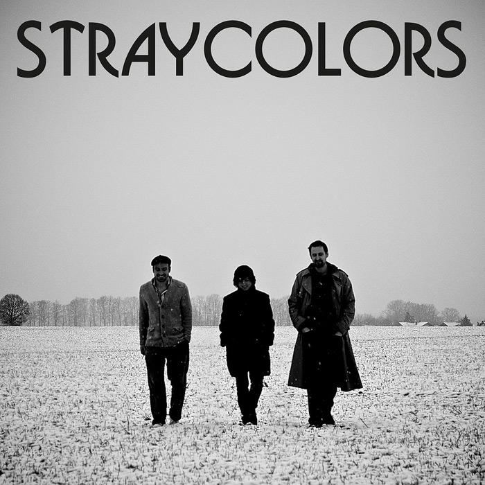 stray2.jpg