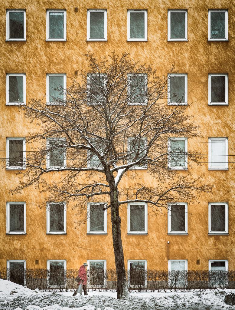 Mannerheimintie 142, Helsinki