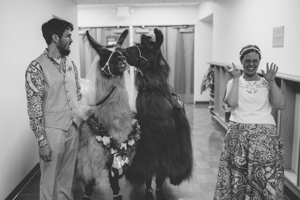 david + sarah | seattle wedding | arbr pictures-126-2.jpg