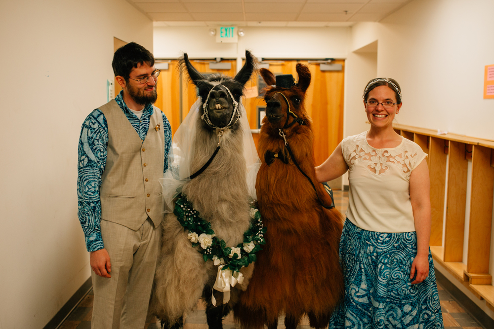 david + sarah | seattle wedding | arbr pictures-125.jpg