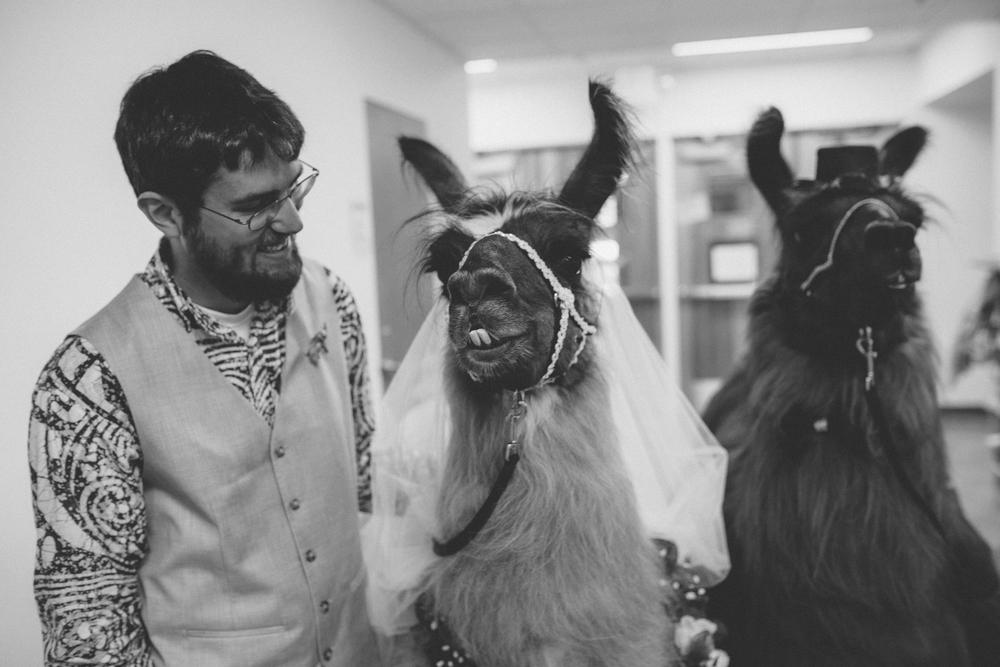 david + sarah | seattle wedding | arbr pictures-127-2.jpg