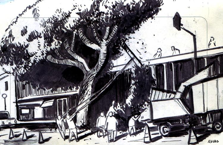 sketches013.jpg