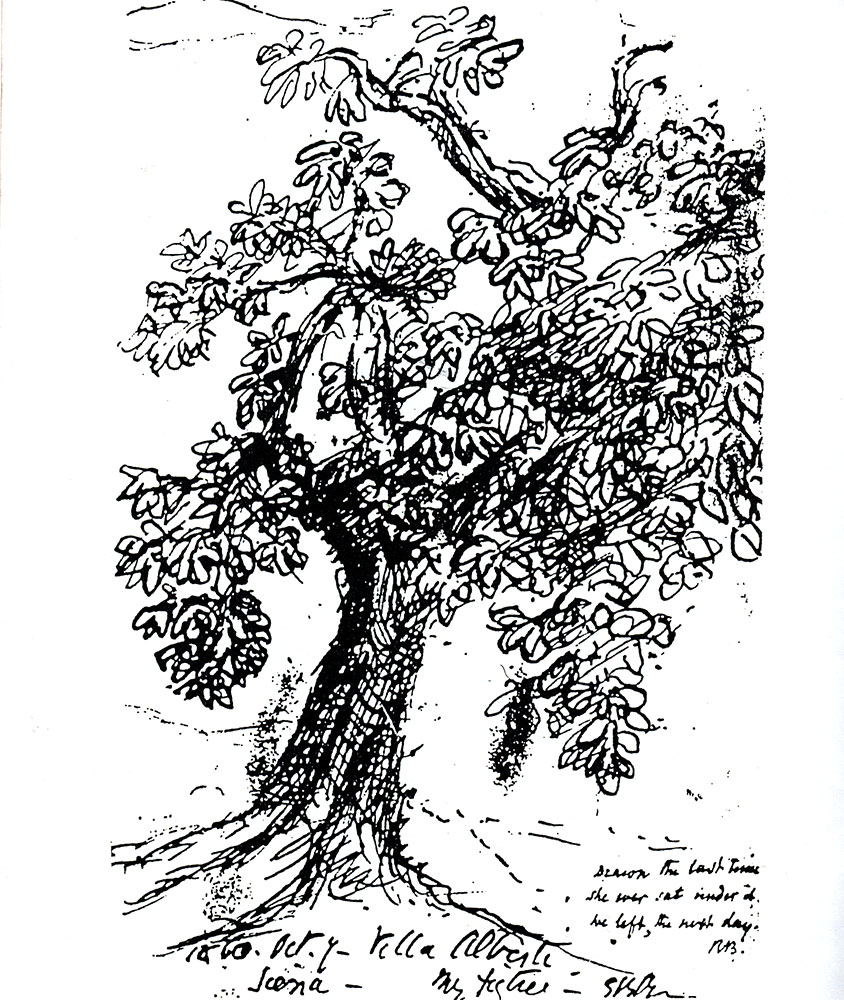 Elizabeth Barrett Browning (1806-1861) signed this drawing '1860, Oct.7-Villa Alberti Siena-My fig tree-E.B.Browning'. The second inscription is in Robert's hand.