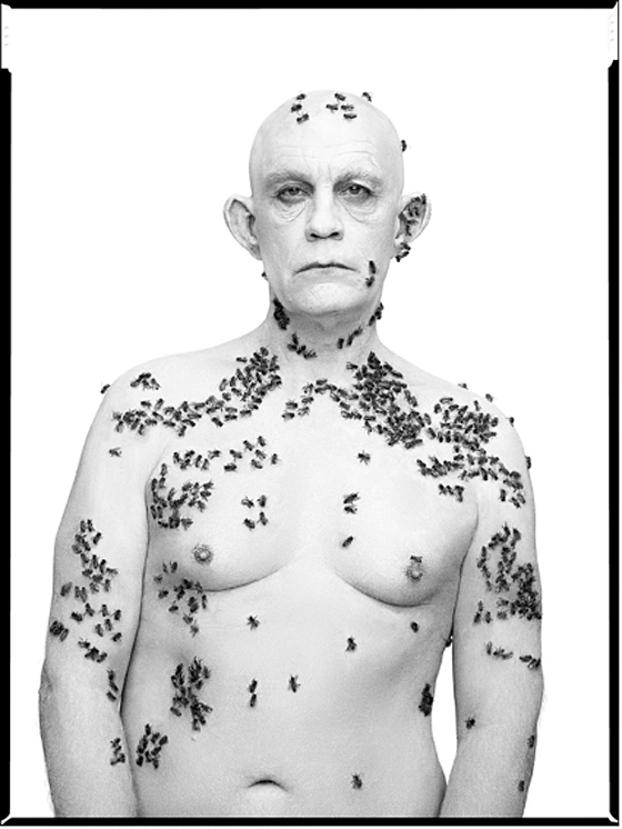 Richard Avedon / Ronald Fisher, Beekeeper, Davis, California, May 9 (1981), 2014
