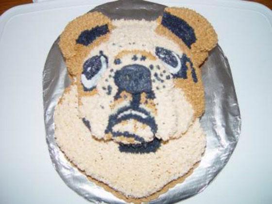 cake-fail-15.jpg