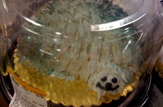 cakefail-9-e1424795012402.jpg