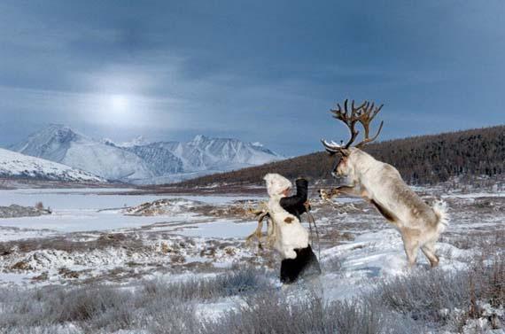 mongolia_reindeer_tribe_5.jpg
