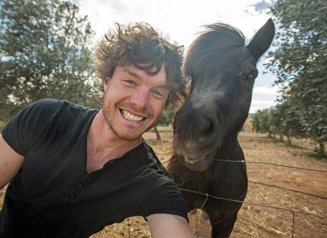 animal-selfie-donkey.jpg
