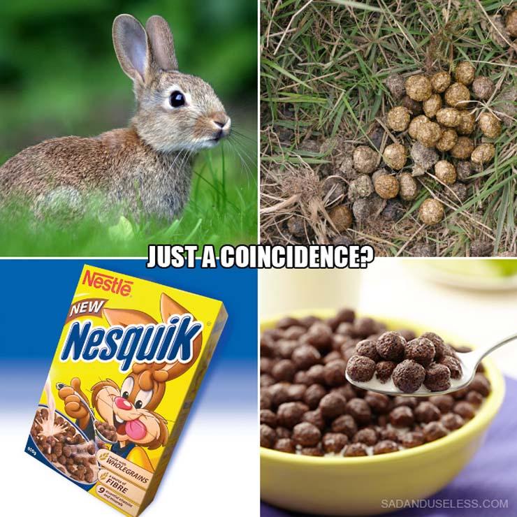 coincidence1.jpg