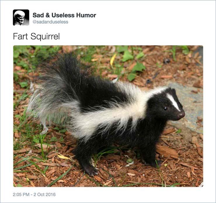 name-skunk.jpg