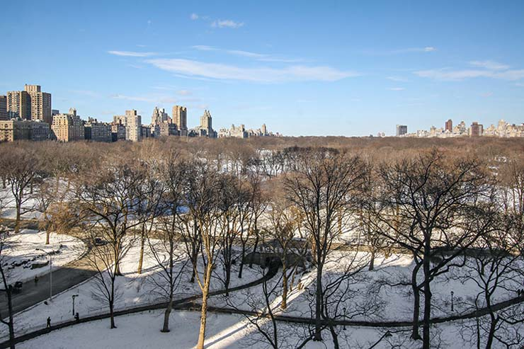 7_160CentralParkSouth_147_View_HiRes.jpg